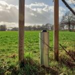 Twentekanalen_Grondwater_site_7.jpg