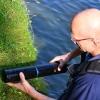 Beter inzicht in de groei van blauwalgen