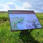 Rijnland_Lysimeter_verdamping_project_6.jpg