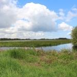 Rijnland_Lysimeter_verdamping_project_7.jpg