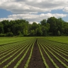 Bezoek Eijkelkamp Soil & Water op de AgriFoodTech