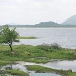 Royal_Eijkelkamp_Sri_Lanka_News_2.jpg