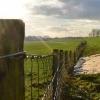 Grondwaterdata noodzakelijk voor veilige Grebbedijk
