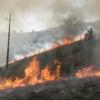 Auswirkungen von Bränden auf Böden, Hydrologie und Wasserströmung