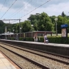 Effect op bomenbestand monitoren bij aanleg tunnelbak station Driebergen-Zeist